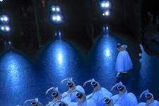 """中央芭蕾舞团迎来参与 """"中法文化之春""""活动十周年纪念"""