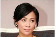 刘嘉玲领衔惨遭绑架勒索的10大明星