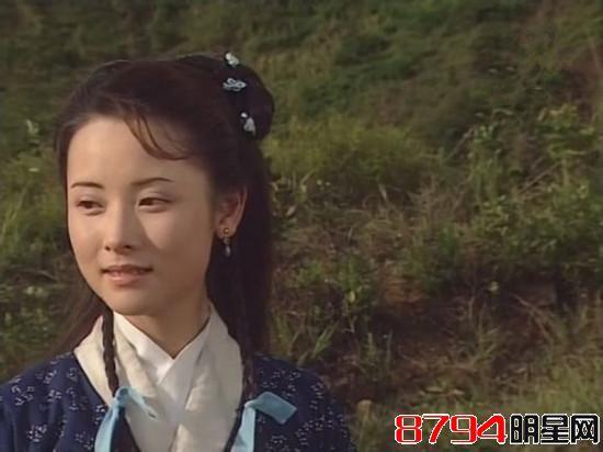 碧血剑江华版演员表_林家栋版的《碧血剑》里扮演\