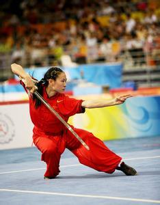 武术的起源与发展 武术的分类 中国武术的起源与发展