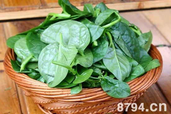落葵(木耳菜)的功效与作用及食用禁忌 木耳菜的营养价值成分表