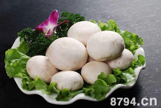 口蘑的营养价值成分表 口蘑的功效与作用