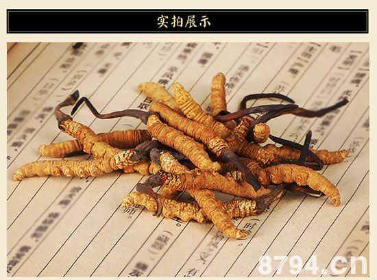 冬虫夏草的功效与作用及食用方法禁忌 冬虫夏草的吃法及用量
