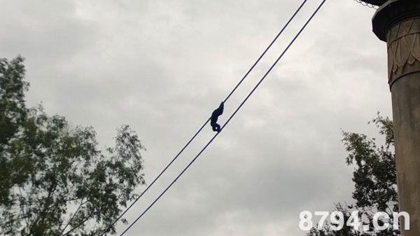 三、爬斜绳的技巧与动作要领