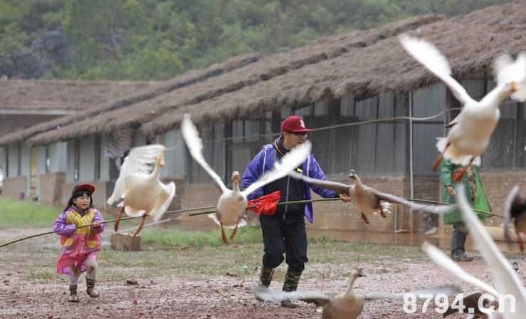 """毛南族春节习俗""""放鸟飞""""的由来"""