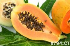 木瓜的功效与作用 木瓜最丰胸的六种吃法 孕妇可以吃木瓜吗