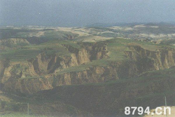 黄土高原介绍:一种丑陋而怪诞的自然