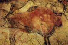 阿尔塔米拉岩洞原始壁画:自然流畅、富有生气、巧妙地捕捉住了动物的基本特点