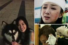 """李依晓5次整容,好不容易当上""""美人专业户"""",却被叶璇的狗咬到毁容!"""