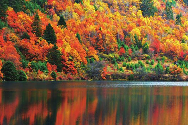四川最美最值得去的地方九寨沟绚烂彩林间的山水传奇 九寨沟最精华景点