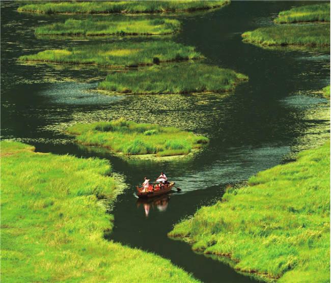 北海湿地保护区内,流水清澈,水草茂密,驾着小船仿佛驶入一片幽深的草海。