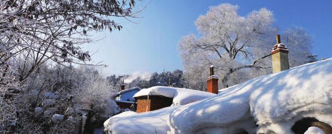 冬天的积雪像一张洁白的毛毯,厚厚地覆盖着屋顶。