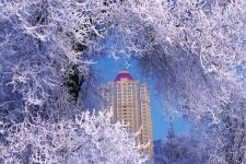 【推荐】冬天最美适合旅游的地方 国内适合冬天旅游的12个地方