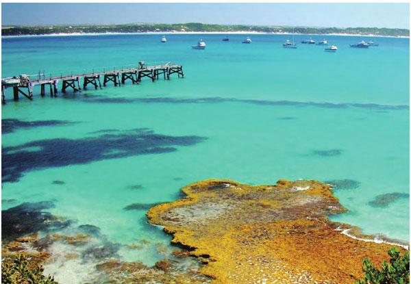 澳大利亚·坎加鲁岛